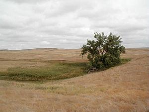 Cedar River National Grassland - Image: Cedar River National Grassland