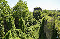 Cetatea Bologa 4.jpg