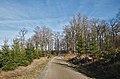 Change of scenery in Fagne Tirifaye, Waimes, Belgium (Velotour intersection 83-to-84, DSCF3661).jpg