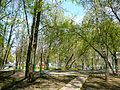 Chertanovo Severnoye District, Moscow, Russia - panoramio (47).jpg