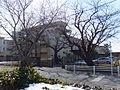 Chiba University Inage House.jpg