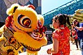 Chinese Lunar New Year 2014, Melbourne AU (12250647513).jpg