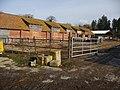 Cholderton - Dairy Unit - geograph.org.uk - 1718164.jpg