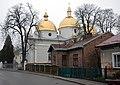 Church of Nativity of the Theotokos, Kamianka-Buzka (06).jpg