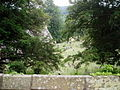 Churchyard at Llantysilio - geograph.org.uk - 188227.jpg