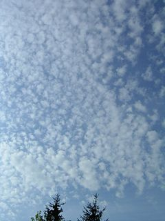 Cirrocumulus cloud genus of clouds, high-altitude cloud