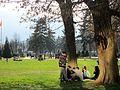 City Park in Skopje 78.JPG