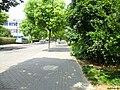 City Street - panoramio (2).jpg