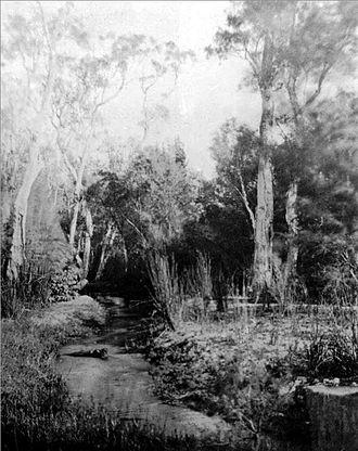 Claise Brook - Claise Brook, 1861