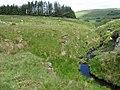 Clea Burn - geograph.org.uk - 846267.jpg