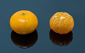 Clementines (01014)s.jpg