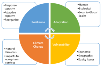 Climate resilience - A graphic displaying the inter-connectivity between climate change, adaptability, vulnerability, and resilience.