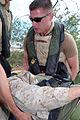 "Coast Guard Transfers ""Injured"" Marine in Guantanamo Bay DVIDS1091714.jpg"
