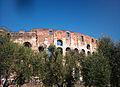 Colisée - Amphithéâtre Flavien - Rome.jpg