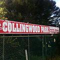 Collingwoodparkalbany3.JPG