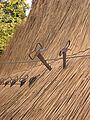 Concordia molen vastzetten riet.jpg