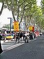 Confrérie provencale du maintien des traditions au ban des vendanges d'Avignon.jpg