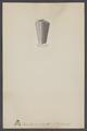 Conularia ornata - - Print - Iconographia Zoologica - Special Collections University of Amsterdam - UBAINV0274 005 11 0007.tif
