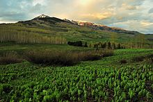Copper Lake Trail, Crested Butte.jpg