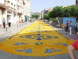 Corpus Christi flower carpet in Tamarite 2006-042.jpg