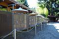 Cougar mountain zoo 0217.JPG