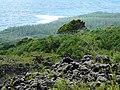 Coulée de 1986 - panoramio - franek2.jpg