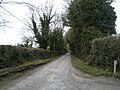 Country Road, Co Meath - geograph.org.uk - 1755762.jpg