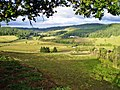 Countryside view from Sweet Cheeks Winery.jpg