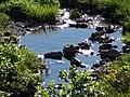 Creek (9710598113d343dc803be28d7f70bbe4).JPG