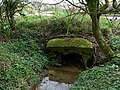 Culvert under the road - geograph.org.uk - 773149.jpg