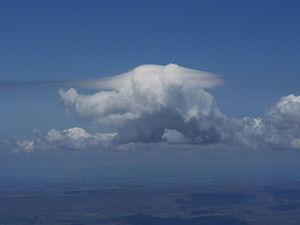 Pileus (meteorology) - Pileus on a Cumulus cloud