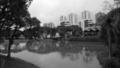 Curitiba - Paraná1.png