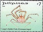 Cyrtomaia largoi 2008 stamp of the Philippines.jpg