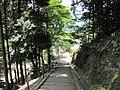 Daigo-ji National Treasure World heritage Kyoto 国宝・世界遺産 醍醐寺 京都070.JPG