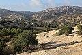 Dana Nature - panoramio (3).jpg