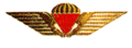 Danish Freefall Parachutist Badge.png