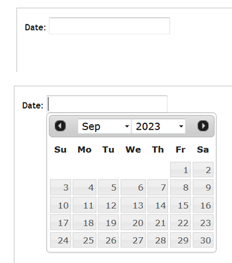 Date picker - An example of a date picker in use. When the user clicks on the entry field, a calendar pops up below.