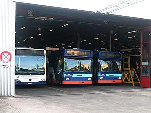 Trolleybuses in Geneva - Image: Depot Geneva Citaro et Swisstrolley