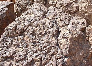 Desert varnish - Desert varnish on Bishop Tuff.
