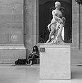 Dessinatrice au Louvre 1, 2014.jpg