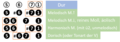 Die verschiedenen oberen Tetrachorde der Dur- und Molltonleitern.png
