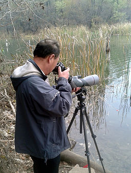 digiscoping tips