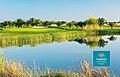 Dom-Pedro-Laguna-Golf-Course-Algarve-Portugal.jpg