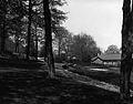 "Driveway and garden at ""Ravenscrag"" (II-143391).jpg"