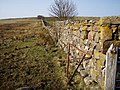 Dry stone dyke - geograph.org.uk - 382096.jpg