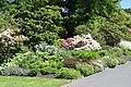 Dunedin Botanic Garden 04.jpg
