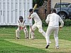 Dunmow CC v Brockley CC at Great Dunmow, Essex, England 24.jpg