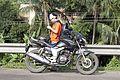 Durgapur Expressway 29.jpg
