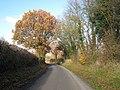 East Sutton Road, Ulcombe, Kent - geograph.org.uk - 1044662.jpg
