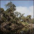 Econo River 08.jpg
